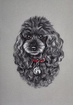 Image result for painting miniature black poodle