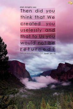 "{أَفَحَسِبْتُمْ أَنَّمَا خَلَقْنَاكُمْ عَبَثًا وَأَنَّكُمْ إِلَيْنَا لَا تُرْجَعُونَ}  Then did you think that We created you uselessly and that to Us you would not be returned?"""