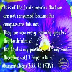 """The word for today is #mercies. The Lord gives us mercy and grace sufficient to live each day to the fullest. We can rely on this even in the worst of times, because the Lord's compassion does not fail and His mercies are """"new every morning."""" Lamentations 3:22-24 (KJV) says:  It is of the Lord's mercies that we are not consumed, because his compassions fail not. They are new every morning: great is thy faithfulness. The Lord is my portion, saith my soul; therefore will I hope in him. (For…"""