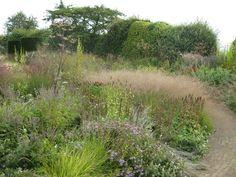 """The Garden Wanderer: """"Where is the garden?"""" henk gerritsen #wild #perrenial #groundcover"""