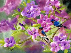 pretty flowers for pretty birds