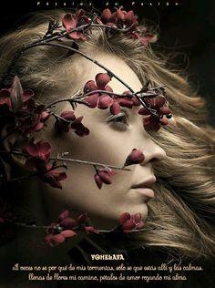COLABORADORAS YOHELAVA & ALEJANDRO A veces no se por qué de mis tormentas, sólo se que estás allí y las calmas. llenas de flores mi camino, pétalos de amor rozando mi alma Yohelava http://petalosdepasion.tumblr.com/tagged/yohelava https://www.facebook.com/media/set/?set=a.1647623388835886.1073741933.1550290321902527&type=3