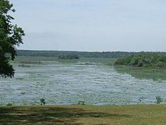 Lake Iamonia - Wikipedia, the free encyclopedia