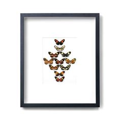 Longwing Formation, $800, now featured on Fab.