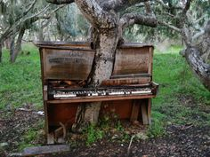 Located behind the California State University, Monterey Bay Music Department; created by artist Jeff Mifflin
