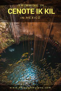 Cenote Ik Kil: A Beautiful Underground Pool in Yucatan, Mexico. #Mayan #Mexico #Tijuana #Caravan #Chichén  #Guanajuato #Guadalajara #Mérida #Oaxaca
