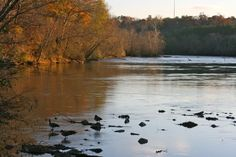 Chattahoochi River in Atlanta Georgia- Photo by Amy Laurel Hegy @A Tale of Two Tramps
