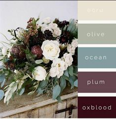Autumn Color Palette- Www Sarahswedding Autumn Color Palette Wwwsarahswedding * herbst-farbpalette - www sarahs hochzeit herbst-farbpalette www sarahs hochzeit wedding - wedding DIY - wedding Games Fall Color Palette, Colour Pallete, Colour Schemes, Rustic Color Schemes, Christmas Colors Palette, Ocean Color Palette, Rustic Color Palettes, Soft Summer Palette, Blue Color Combinations