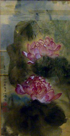Beautiful Lotus.