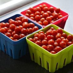 """Tomato Candyland - This 2016 AAS National Winner has a much more manageable and compact indeterminate plant than other currants do. Its .5"""" round deep red fruit are produced on long trusses of multiple fruit. The branched trusses are easily accessible for easy harvest of its tiny, very sweet fruit."""