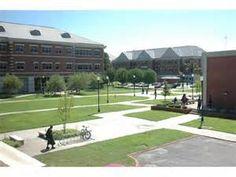 university of arkansas at pine bluff - Bing Images