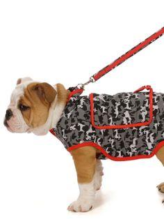 Novelty Printed Rain Slicker by My Canine Kids at Gilt - OMG, look at Mr. Bulldog!! ;)