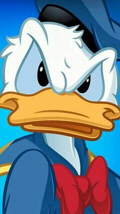 Donalds attitude....