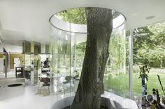 Boxy Kitchen, Deurle, Belgium, Architects: Maarten Van Severen \\ © Maarten Van Severen Foundation, Gent \ Foto: Stijn Bollaer