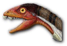 Raptorex? Iguanacolossus? These Dinosaurs Have Some Cool Names: Cool Dinosaur Name #2 - Daemonosaurus