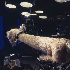 Kidstar Jonathan Brandis rides the mechanical Falkor puppet build by makeup artist Colin Arthur and animatronic special effects expert Giuseppe Tortora for The Neverending Story II The Next Chapter Lights Camera Action, Light Camera, Neverending Story Movie, Practical Effects, Watch Free Movies Online, Animal Totems, Special Effects, Puppets, Filmmaking