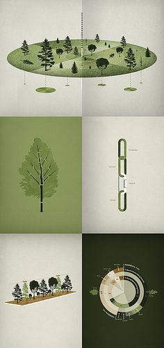 Forestry Infographics by Michael Paukner