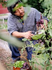 """""""Chef Edward Lee explains how he thinks outside the salad bowl to try leafy greens in soups, pickles, and more.   From Organic Gardening"""""""