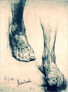what is the hardest part in human anatomy to draw/paint? Anatomy Sketches, Anatomy Drawing, Anatomy Art, Human Anatomy, Drawing Sketches, Art Drawings, Drawing Ideas, Feet Drawing, Body Drawing