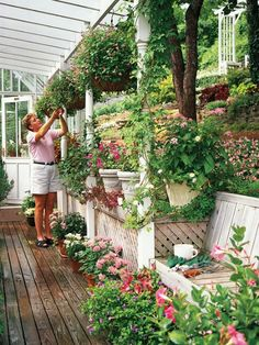 Love the pergola-- want one over the area behind the birdhouse bed...