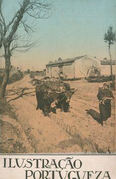 1922 - Ilustração portuguesa  Rural Portugal