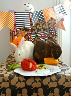 halloween bunny party with scary peperoni, my raw bunnyliscious recipe