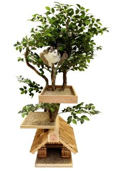 Cat Tree House My cat would love this