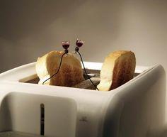 Toast Toasting