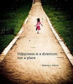 Happiness is a direction, not a place