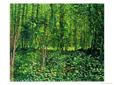 Woods and Undergrowth, c.1887 by Vincent van Gogh. With its monochrome subject matter, this painting is an outlier among the rest of Van Gogh's oeuvre. Completed during his time in Paris, the work features an verdant copse unlike other foliage Van Gogh painted. He is known for painting flowers, and also cypress trees, but this remains a (very pleasant) rarity. Giclee print from Art.com.