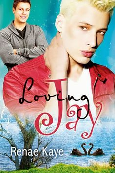 multitaskingmomma : Review: Loving Jay by Renae Kaye