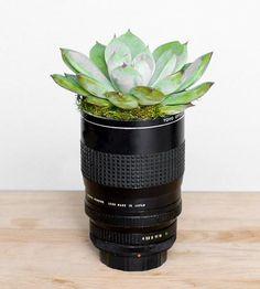 Vintage Camera Lens Planter | Transforming broken equipment into homey décor, this succulent... | Pots & Planters