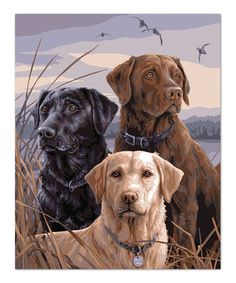Love this Proud Labs Paint By Numbers Art Kit by Plaid on #zulily! #zulilyfinds