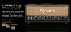 This fellow is on the top 5 list The Sonic, Marshall Speaker, Musical Instruments, Guitar, Amp, Music Instruments, Instruments, Guitars