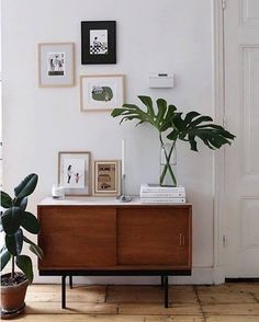Mid-century style wooden sideboard in white living room with monstera and framed prints