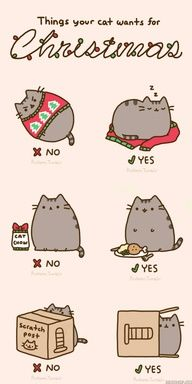 Things your cat wants for Christmas.