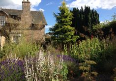 The Hargreaves Alexander garden looking fabulous, 9 years on