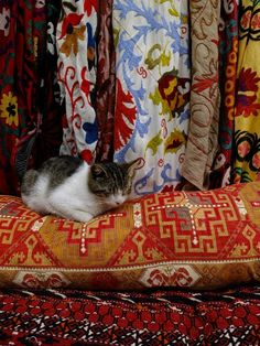 Sleeping cat on a kilim pillow in Istanbul, Turkey