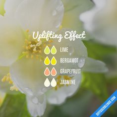 Uplifting Effect - Essential Oil Diffuser Blend