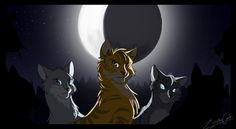 dovewing lionblaze and jayfeather