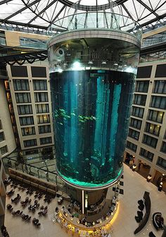 AquaDom, Berlin    There's something a little fishy about the lobby of the Radisson Blu Hotel in Berlin. The lift goes right through the centre of a 25-metre-tall, cylindrical aquarium that's home to close to 100 different sea species.