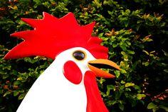 Big Chicken - https://www.tomslatin.com/big-chicken/