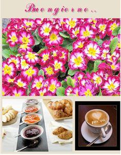 #buongiorno #colazione #caffè #dolci #pane #marmellata #fiori #primavera #goodmorning #breakfast #coffee #sweet #bread #marmalade #jam #flowers #spring