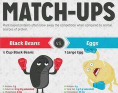 Protein: Beans vs. Eggs