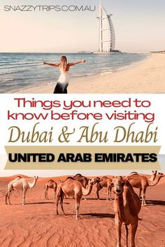 Amazing Facts About United Arab Emirates - Things you may want to know before you go to any of the Emirate states, plus interesting facts, tips and advice. #dubaitravel #abudhabitravel #uaetravel #uaefacts #uaeblog #snazzytrips Places To Travel, Travel Destinations, Places To Visit, Dubai Travel, Asia Travel, Amazing Facts, Interesting Facts, Driving In Italy, Ferrari World