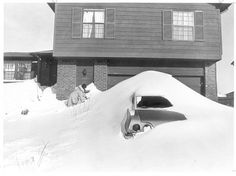 I survived the Blizzard of '82