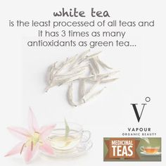 White tea has arrived in North America. While Chinese tea drinkers have been hip to white tea's benefits since the Ming Dynasty, until recently it was virtually unknown outside of Asia. White tea is the least processed of all teas and it has three times as many antioxidants as green tea! White Tea also protects the heart and the entire circulatory system.