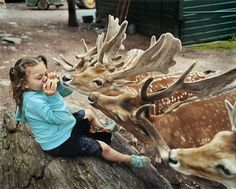 Amelia And The Animals: Photographer Mom Captures Daughter's Love For Animals | Bored Panda