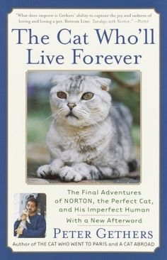 #4 The Cat Who'll Live Forever: The Final Adventures of Norton, the Perfect Cat, and His Imperfect Human