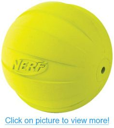 Nerf Dog Squeak Rubbber Ball Dog Toy, Medium/Large, Green For you to view further for this item, visit the image link. (This is an affiliate link and I receive a commission for the sales) Dog Chew Toys, Dog Toys, Dog Training Pads, Dog Food Storage, Dog Shower, Dog Shedding, Dog Diapers, Cute Baby Animals, Animal Babies